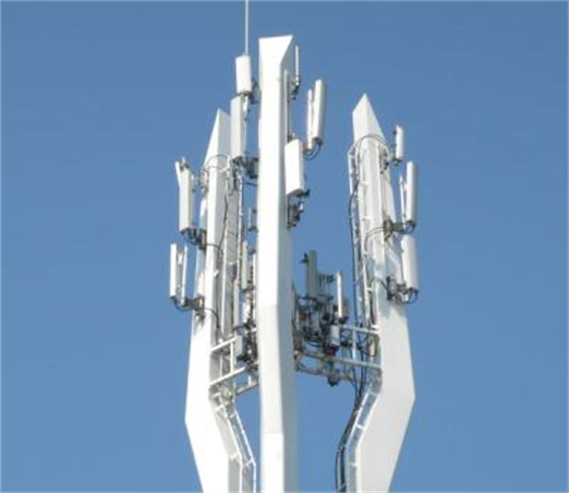 evaluating plans to erect cell towers through The county's school system hopes to erect at least 40 towers, which can hold antennas from up to five cellphone carriers, for payments totaling $5 million through 2021.